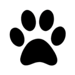 accesso per gli animali
